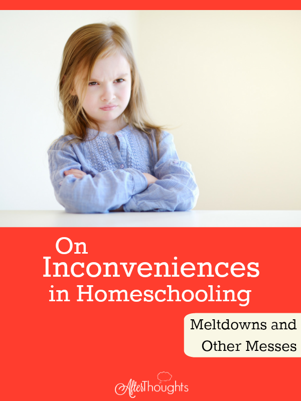 If education is about formation -- about becoming something other than we are -- then meltdowns are an opportunity.