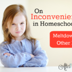 On Inconveniences in Homeschooling: Meltdowns and Other Messes