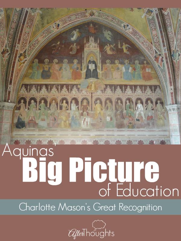 Aquinas Big Picture of Education