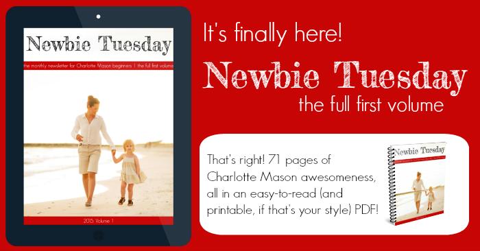 Newbie Tuesday announcement