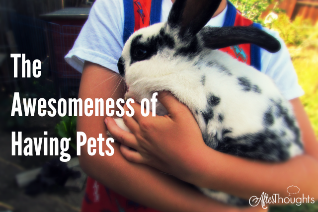 If you want to develop some great qualities in your children, make sure they have a pet to love and take care of and then step back and ... awesomeness.
