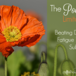 The Poetry of Limitations 2